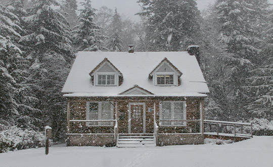 What Do Landscape Designers Do During the Winter?